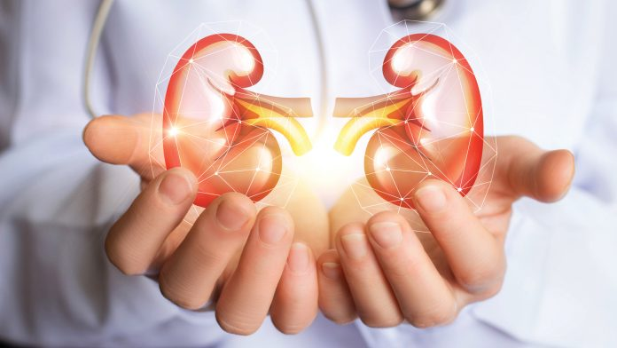 Best Kidney Treatments In Turkey