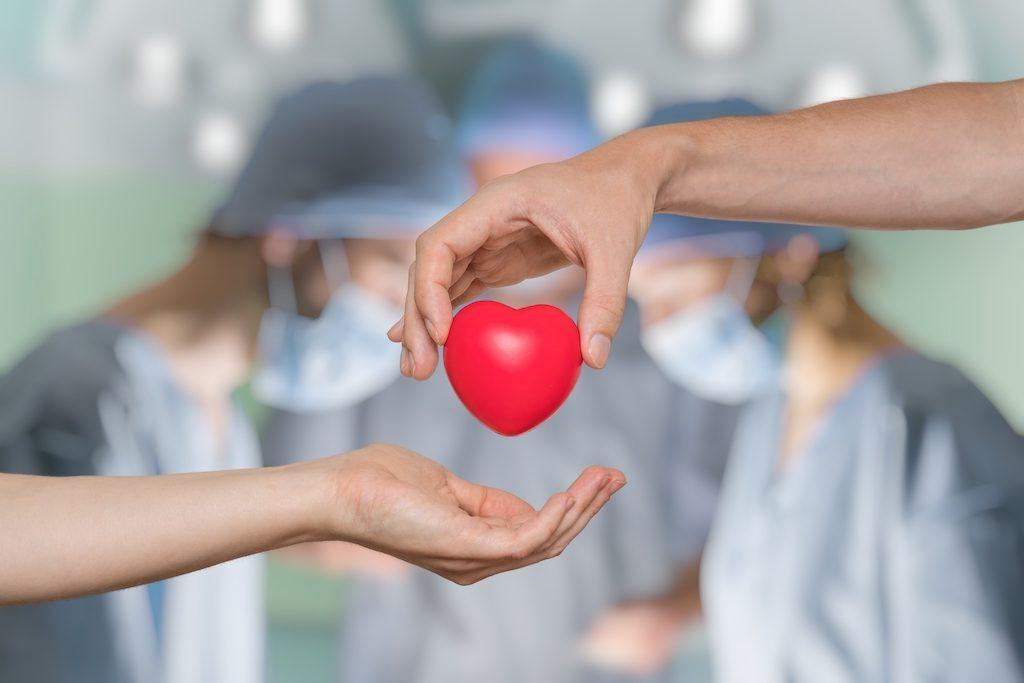 The hospitals that provide Organ Transplantation in Turkey