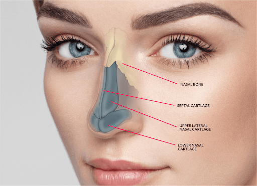 What are the advantages of getting a nose surgery in Istanbul?